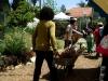 Moving mulch @ The Solar Garden