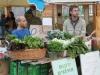 Organic Produce @ The Solar Garden